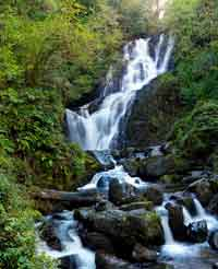Torc Waterfall courtesy Chris Hill Tourism Ireland Imagery