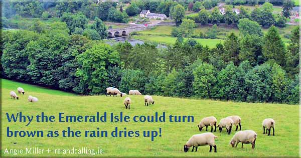 Why-the-Emerald-Isle-could-turn-brown-as-the-rain-dries-up-Kilkenny_Inistioge_photo Angie-Miller