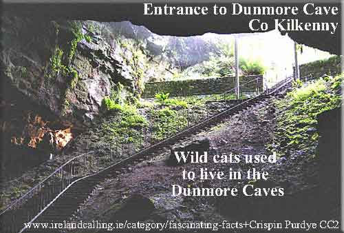 Dunmore_cave,_Co_Kilkenny photo Crispin-Purdye_CC2