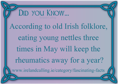 Did You Know graphic - copyright Ireland Calling